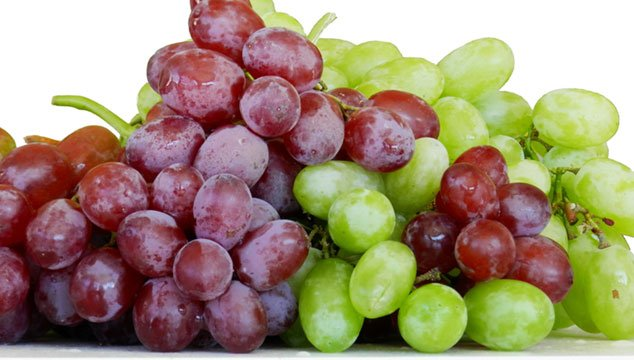 OPC Grape Seed Extract